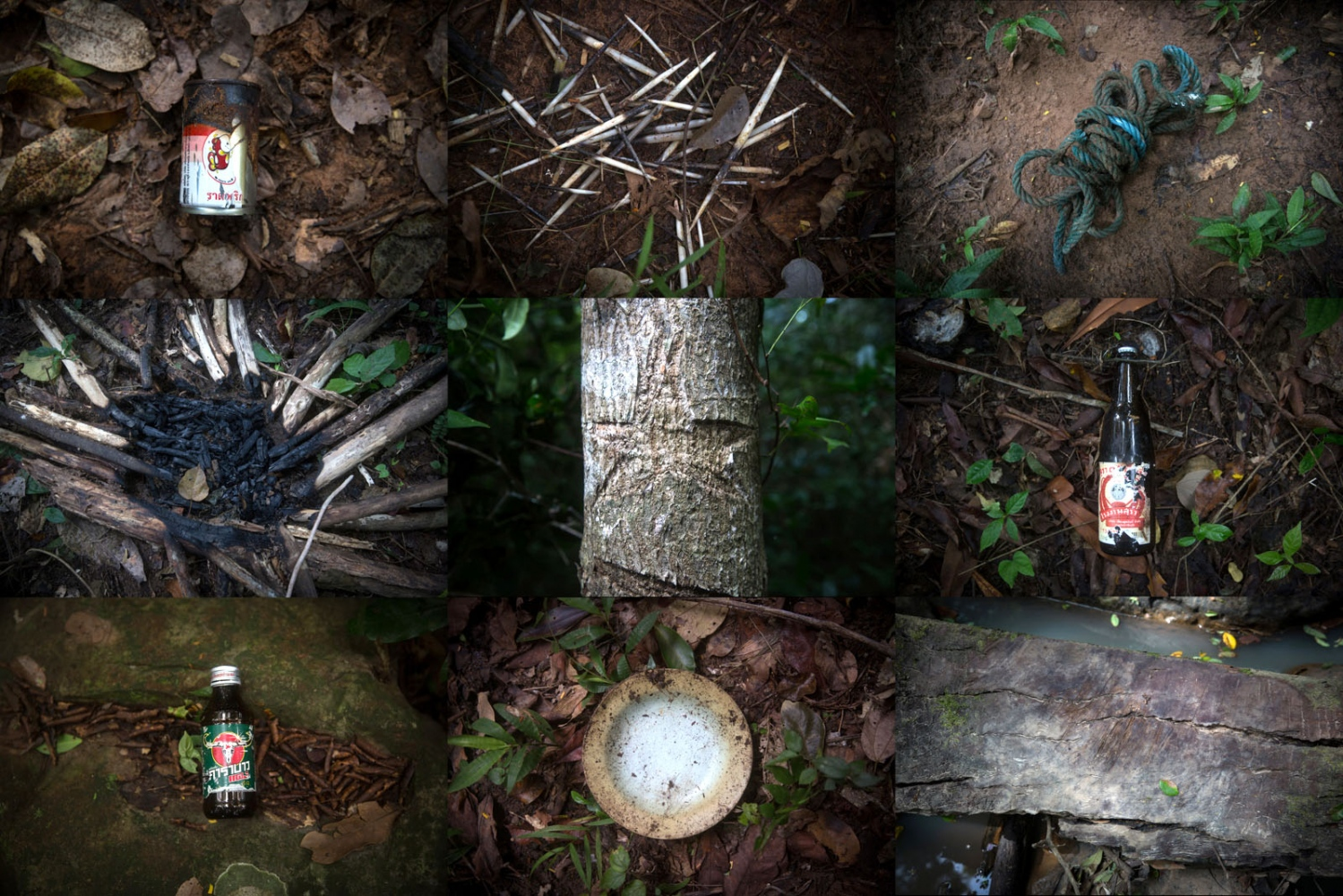 Throughout the forests, rangers look for clues of recent and past logger/poacher presence. This can be in the form of markings cut in to trees, empty alcohol bottles to remains of dead animals eaten in the forest. Ta Praya National Park, Sa Kaew Province - September 2018