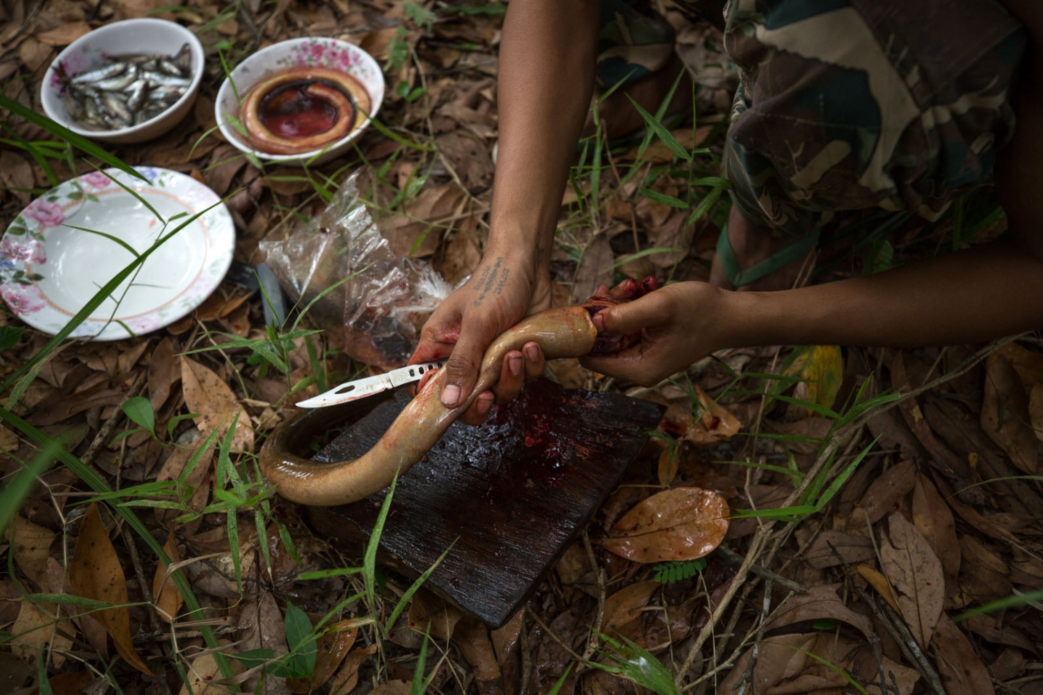 A forest ranger guts an eel caught by the rangers in a small pond to supplement their food supply. Ta Praya National Park, Sa Kaew Province - June 2018