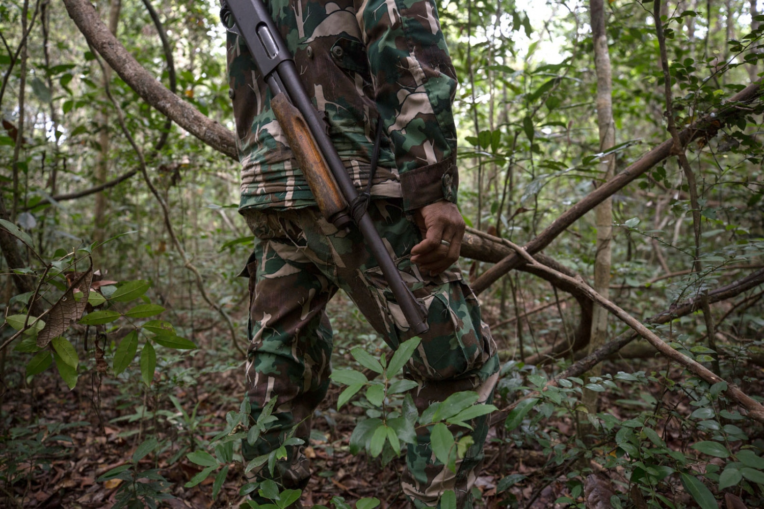 A Thai forest ranger with his old shotgun stands alert listening for sounds whilst on patrol. Ta Praya National Park, Sa Kaew Province - June 2018