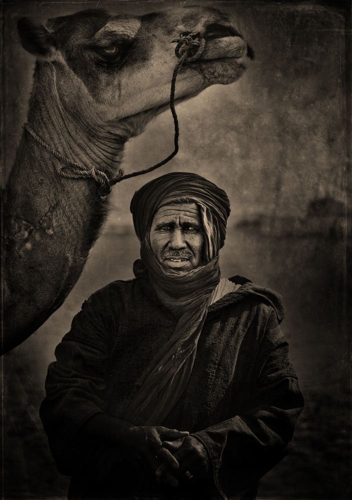 Photography image - Loading camel_man_oil2_visura.jpg