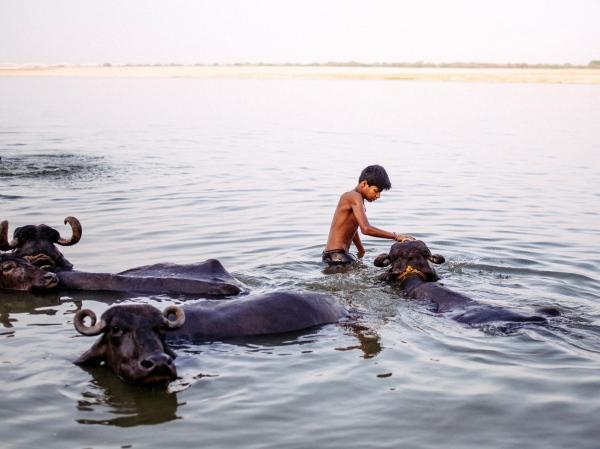 This is Varanasi