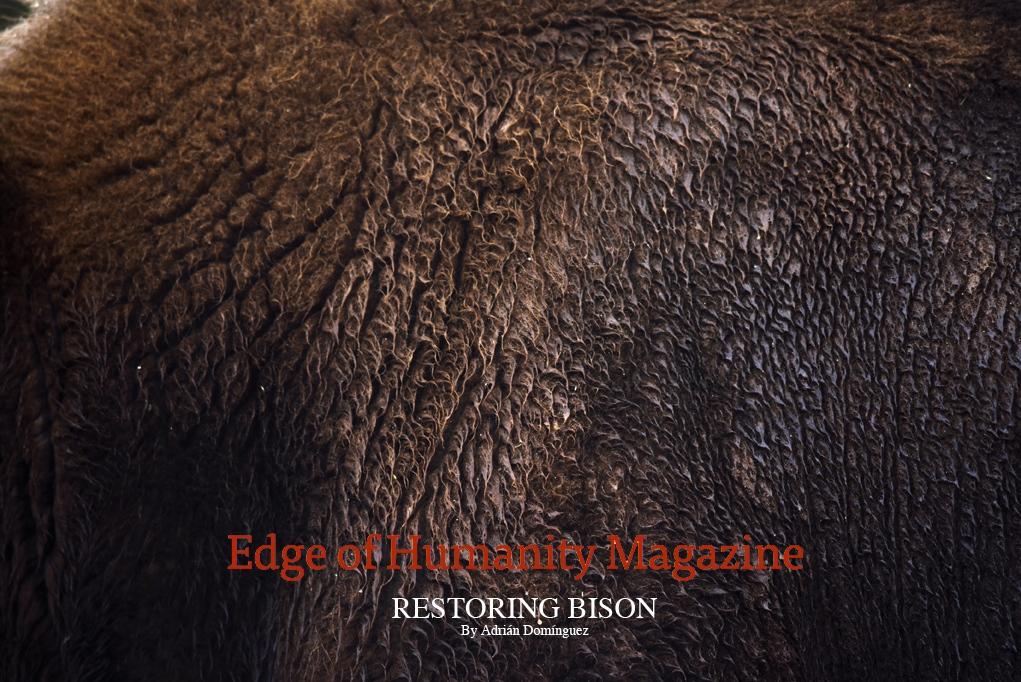 Art and Documentary Photography - Loading EdgeHumanity__ADRIAN_DOMINGUEZ.jpg