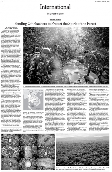 Client:  The New York Times   Published: June 2019