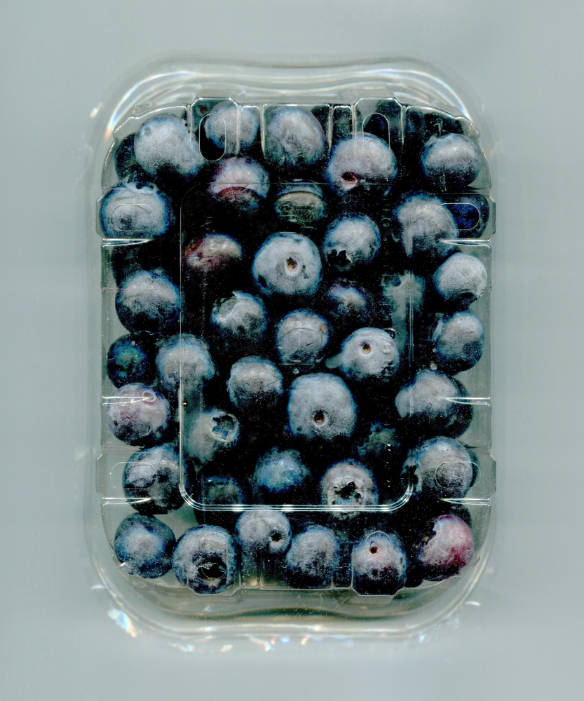 Photography image - Loading plastic.blueberries.jpg
