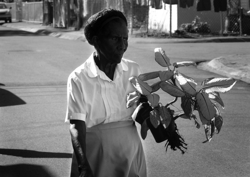 Art and Documentary Photography - Loading 19womanwithplant.jpg