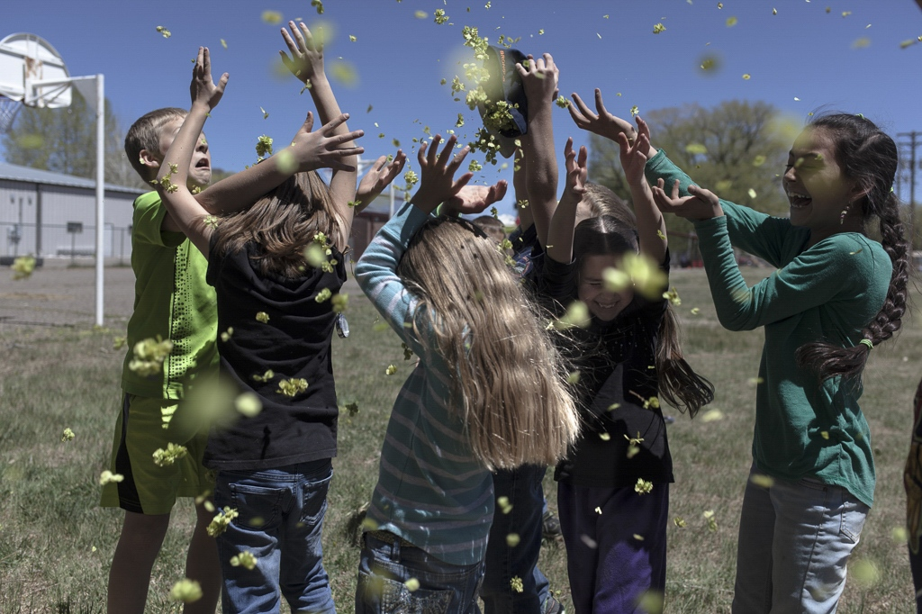 Kids from a small primary school collect leaves to play with during recess. Mountain Valley School - Saguache, Colorado