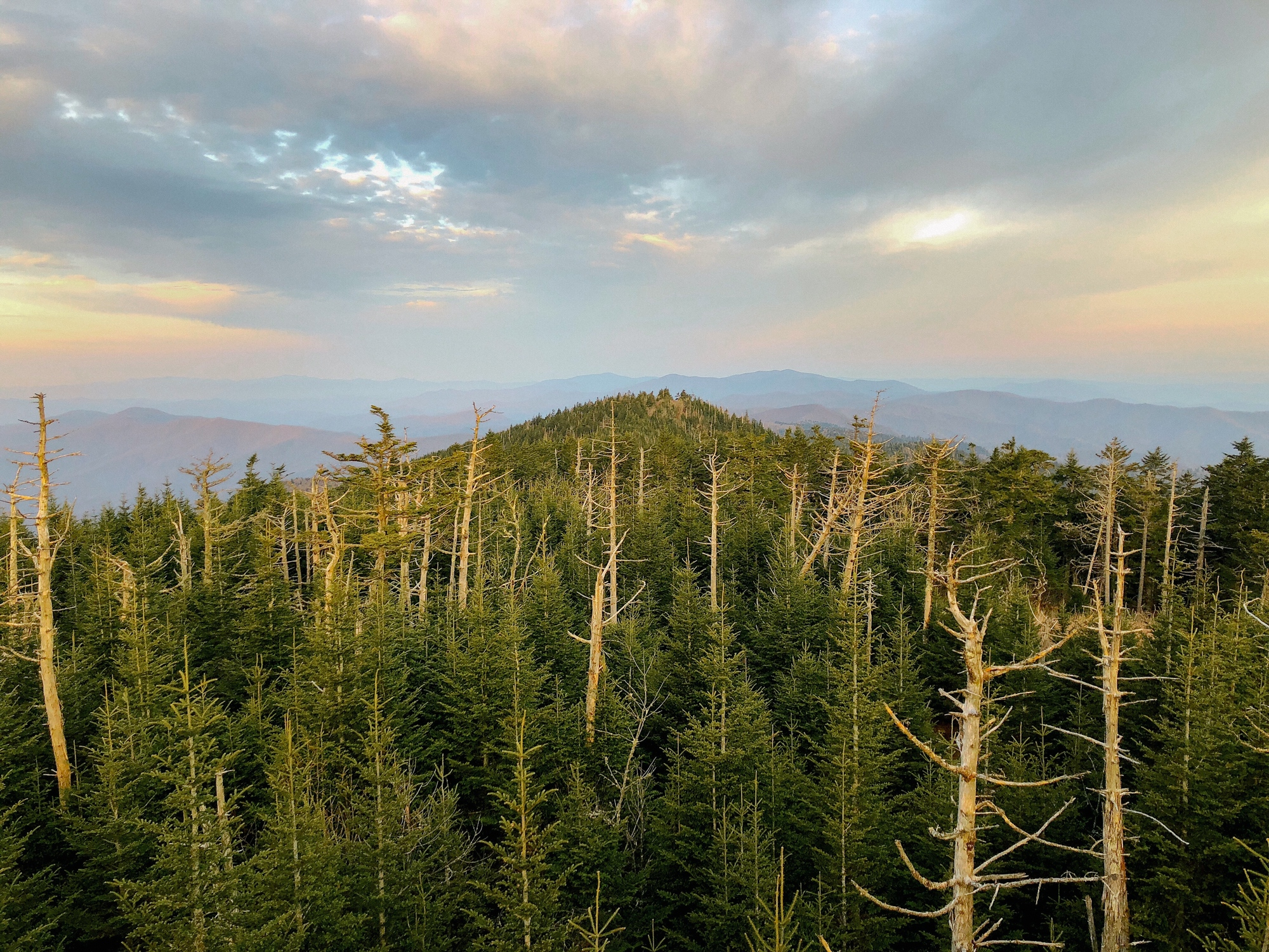 Mount Mitchell, North Carolina, Appalachian Trail 2018