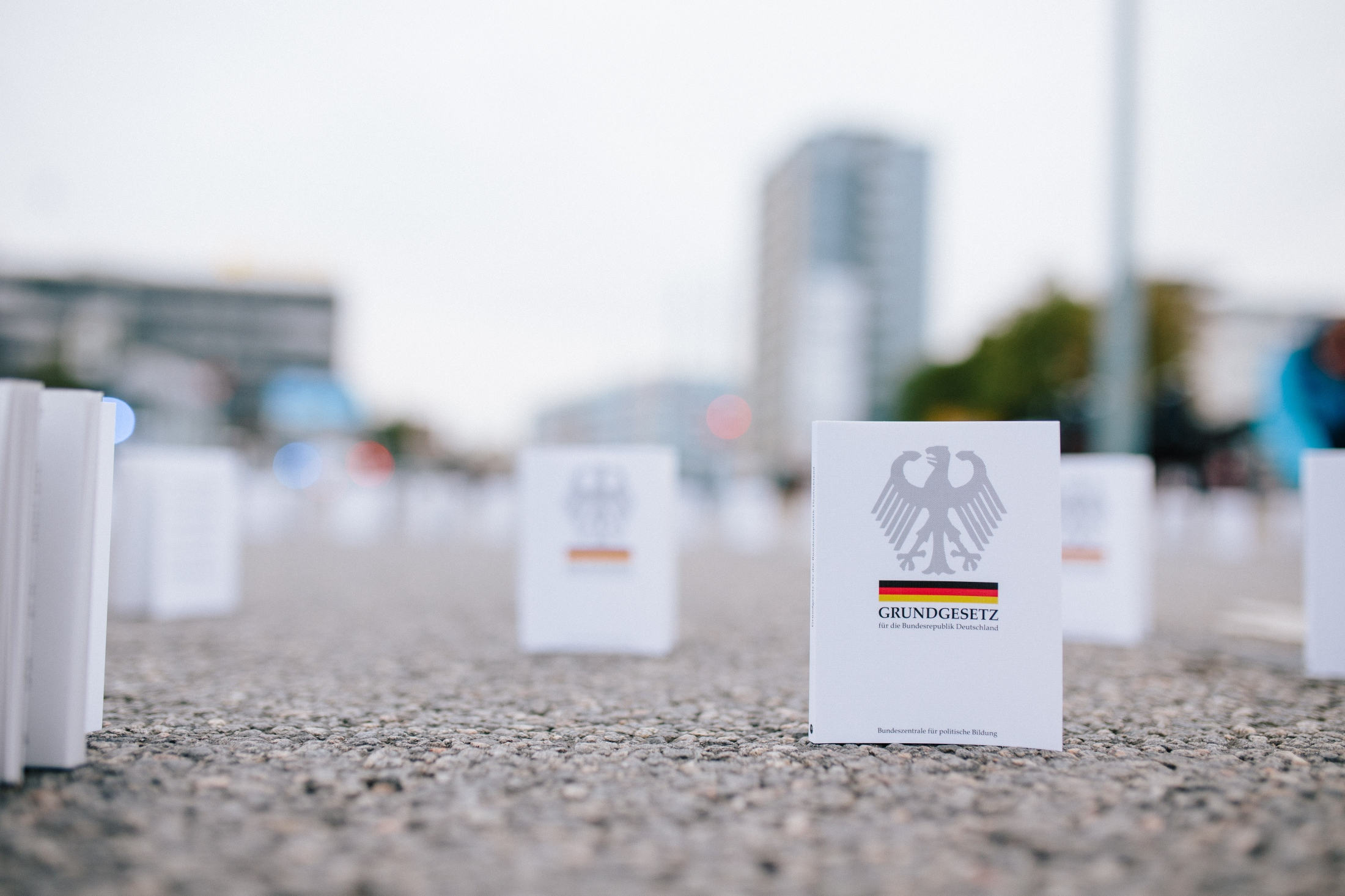 German constitution placed in front of the sit-in on the route of the demonstration.