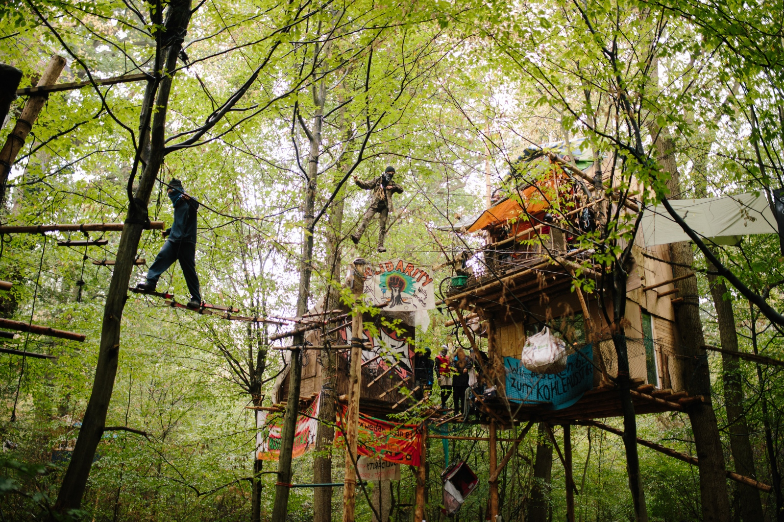 Activists and tree houses at Hambach Forest occupation. 09-13-2018