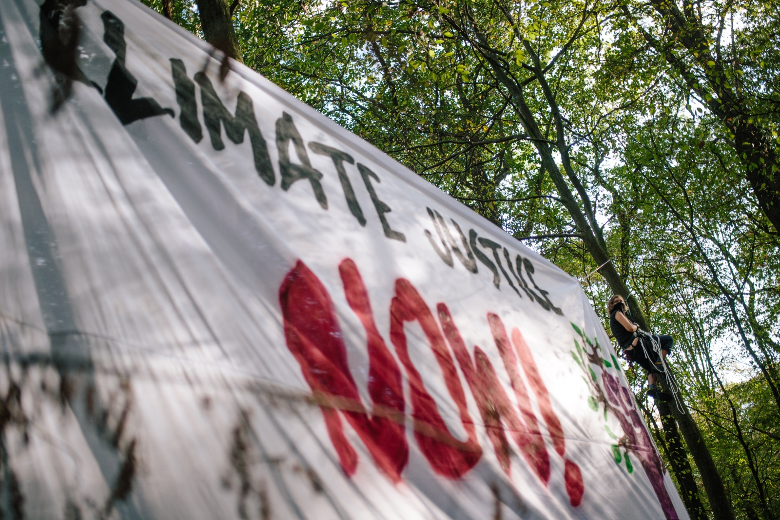 Activists put up banner 'Climate Justice Now' while climbing trees to occupy a new part of Hambach forest and build treehouses. 10-06-2018