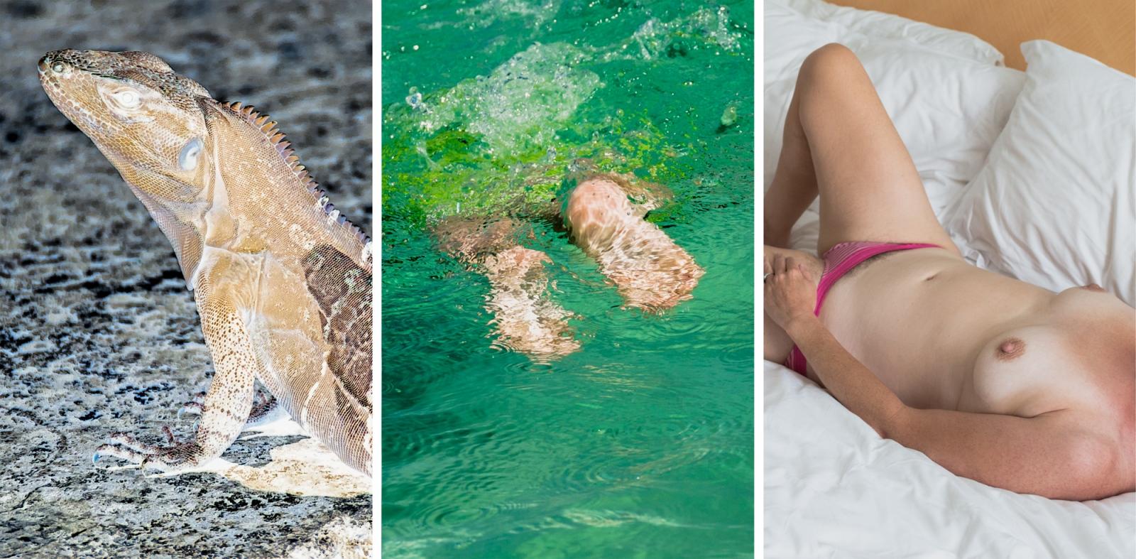Photography image - Loading 3xlizard-dive-nude.jpg