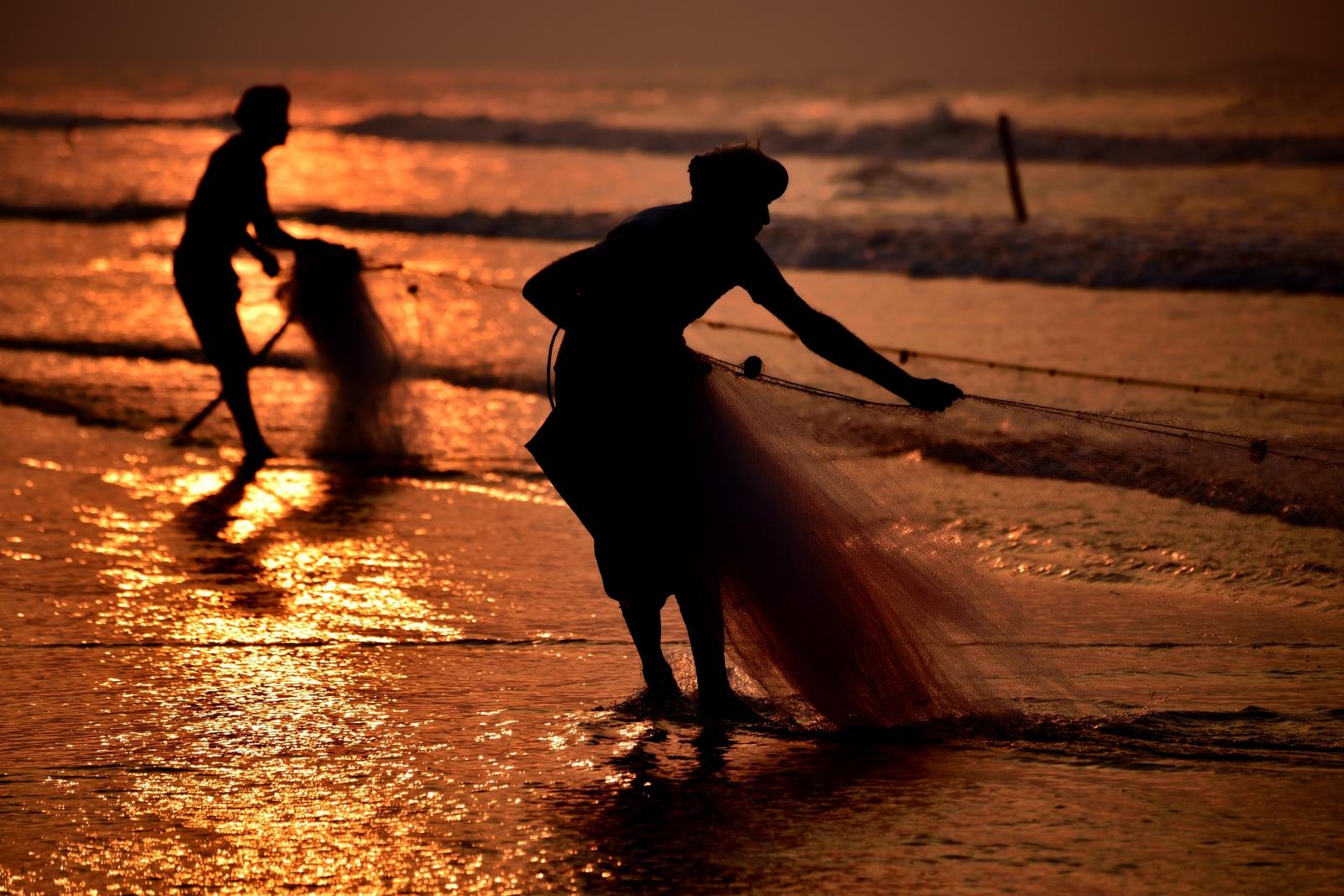 Photography image - Morning Fishing