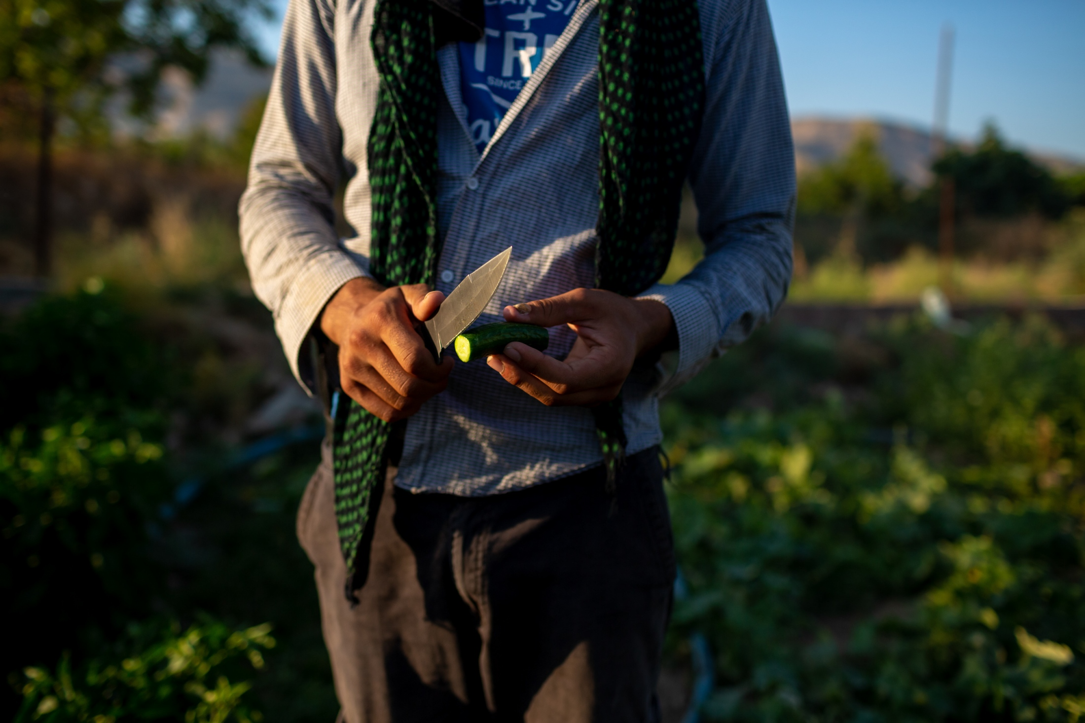 A farmer shows of a cucumber form his garden. Residents across the Tigris River from Hasankeyf wait to be displaced. While their village is not in the flood zone, they expect the flood waters will cause the surrounding structures to be unstable and so they will have to move.