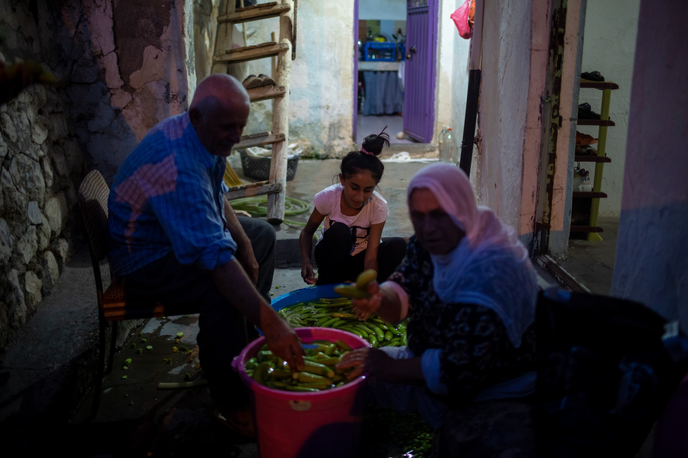 A family clean their crop of cucumbers together. These Kurdish residents have lived off of their land, cattle and various commerce for generations. It is unclear as to how they will survive when they move into apartments the Turkish Government has built for them.