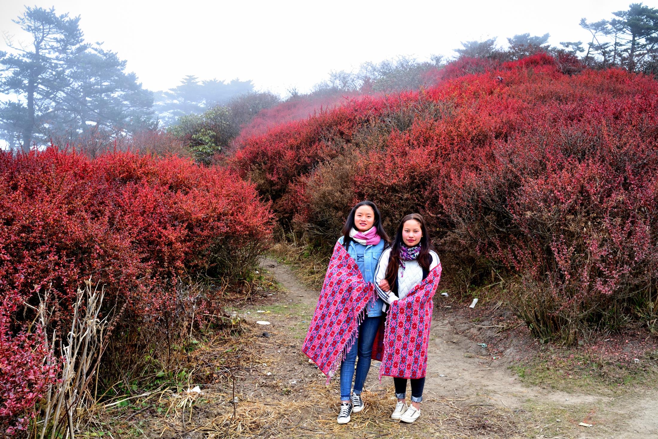 Photography image - Himalayan girls