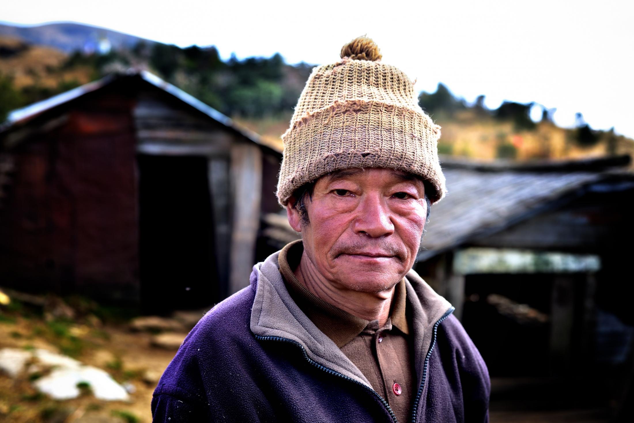 Photography image - Himalayan Shepherd