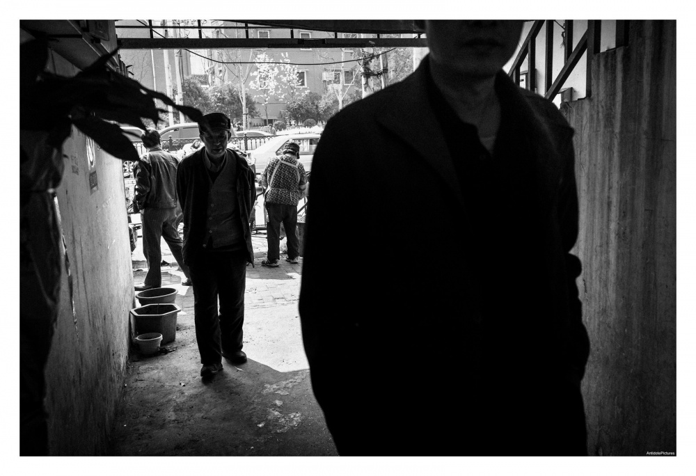 Art and Documentary Photography - Loading L1104169-X3.jpg