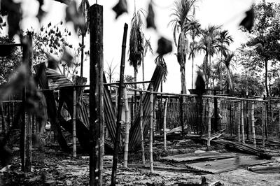Assam Violence - The Aftermath