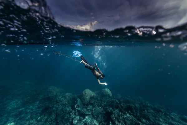 Palawan Seas