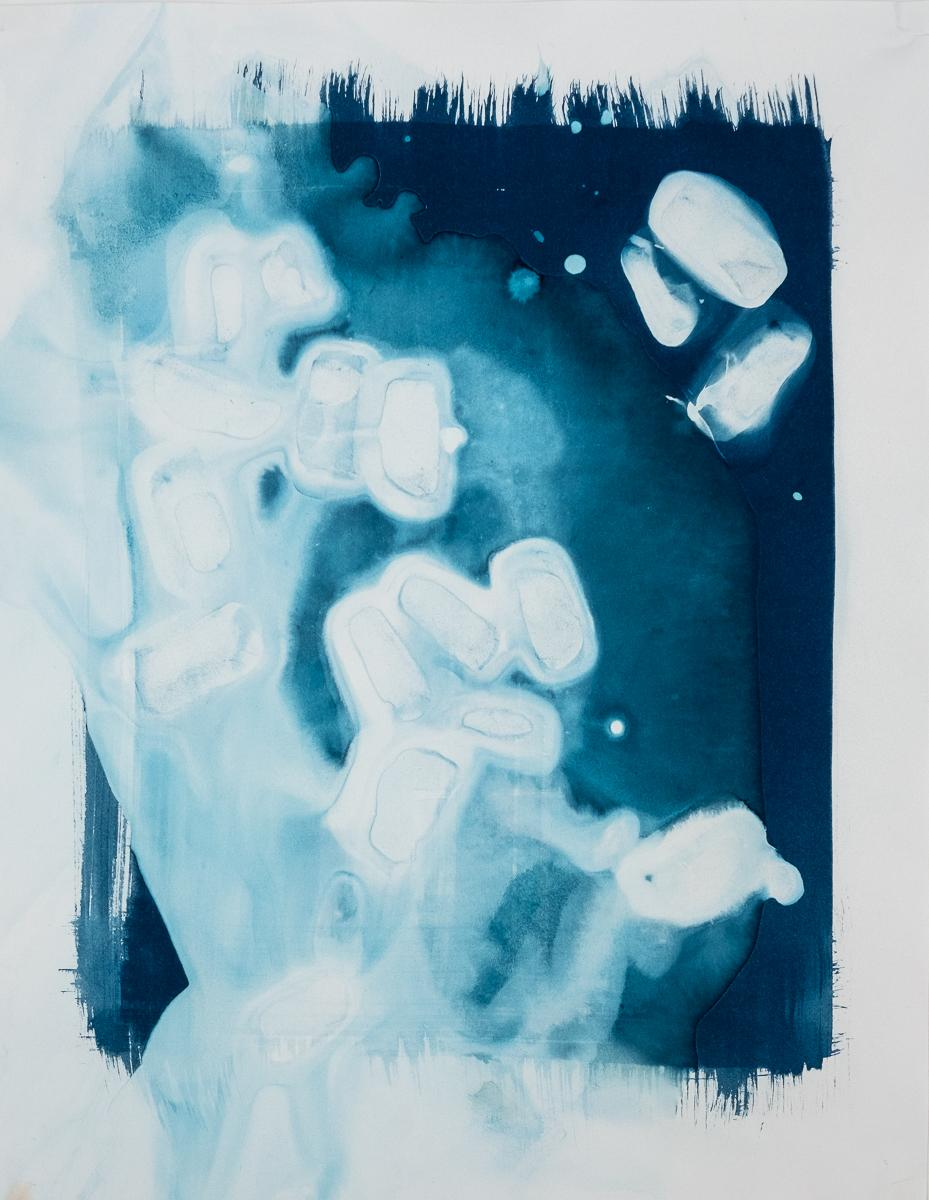 "Untitled 2, 2019 14x11"" cyanotype on paper"