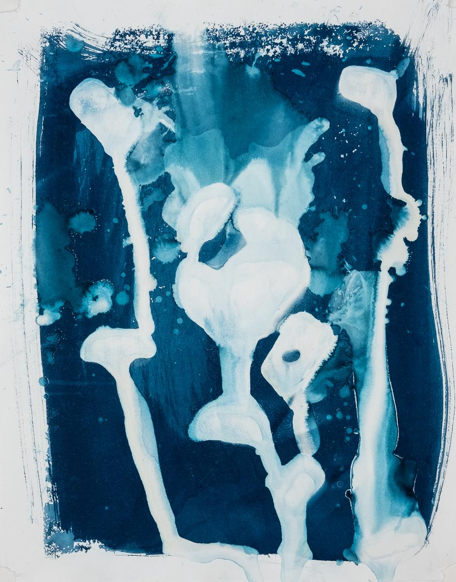 "Untitled 3, 2019 14x11"" cyanotype on paper"