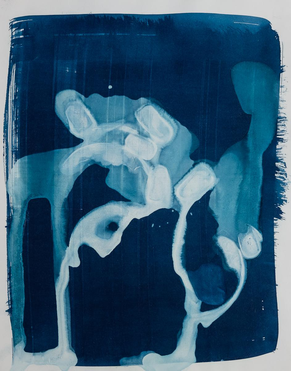 "Untitled 4, 2019 14x11"" cyanotype on paper"