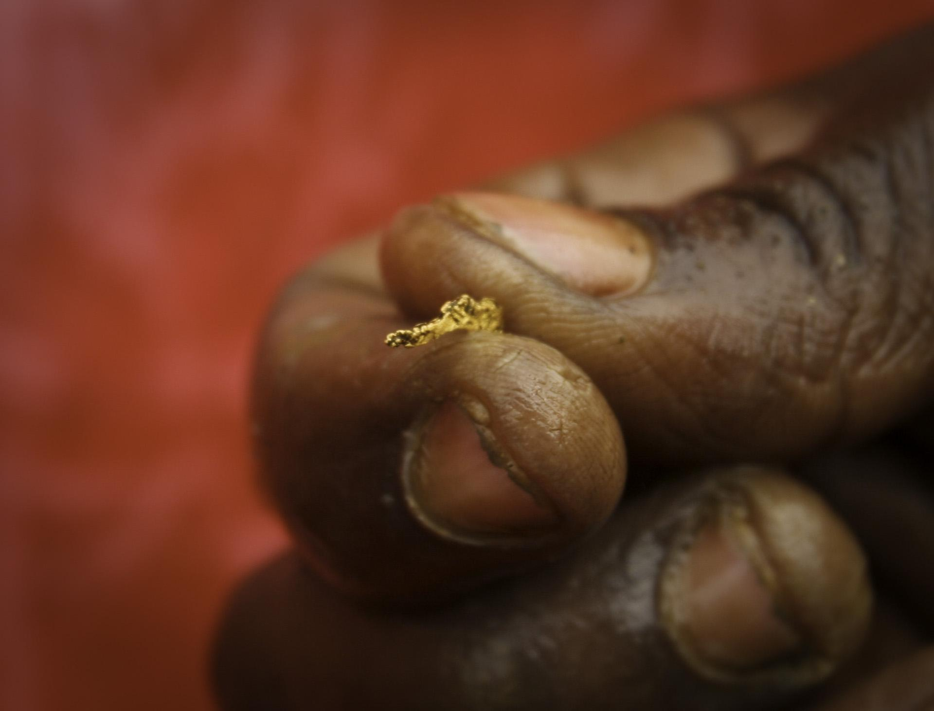 A tiny nugget of gold found at an artisanal gold mine in Montgbawalu.  A find like this is few and far in between. Most workers trade their labor for a few buckets of mud from the mines, hoping to find enough flakes of the metal to feed their families.