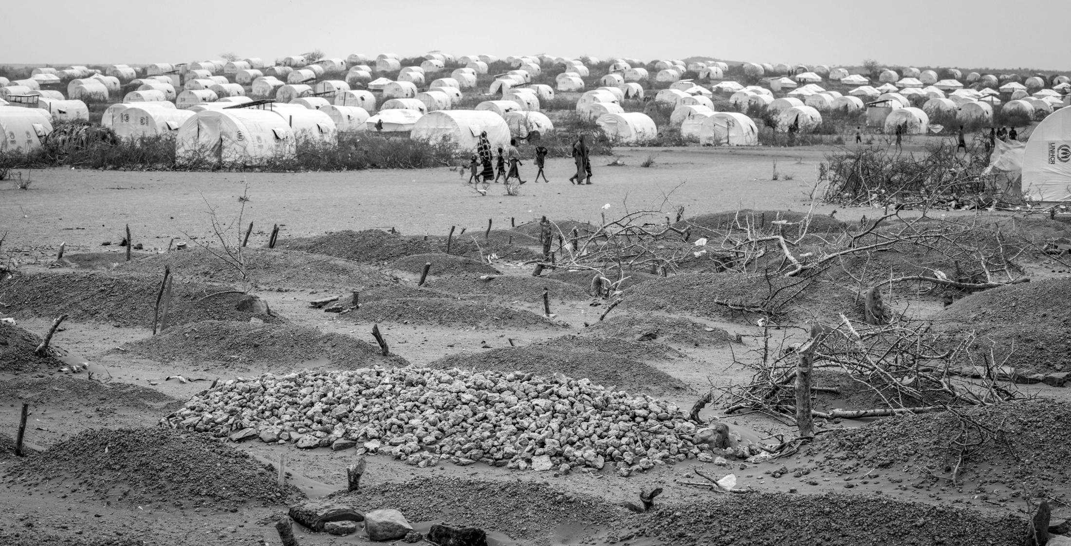 Rows of dead at a temporary graveyard in Kobe Refugee Camp in southeastern Ethiopia, a few kilometers from Somalia/Ethiopia border, August 12, 2011.