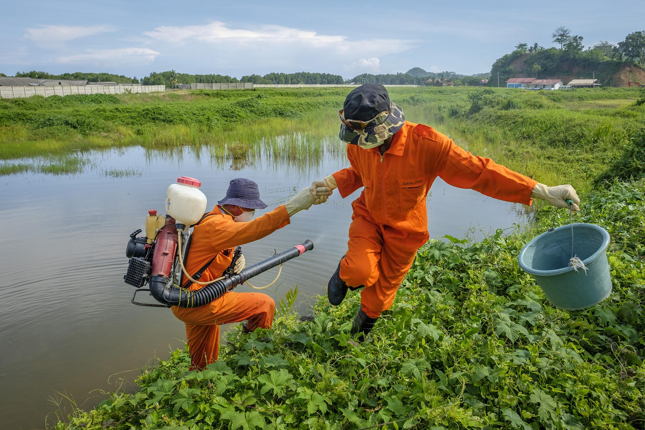 Workers work together to spray pesticide to kill mosquito larvae at an abandoned shrimp farm in Hanura Village in Lampung Province in the island of Sumatra, November 27 , 2018.