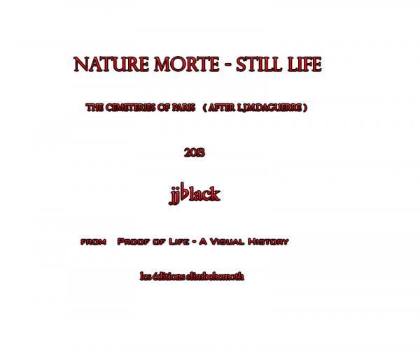 Nature Morte - Still Life