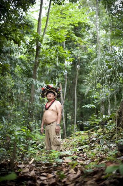 "Chief Almir Narayamoga Surui in the Rainforest at the ""7th September Indian Reserve"" Rondonia, Brazil."