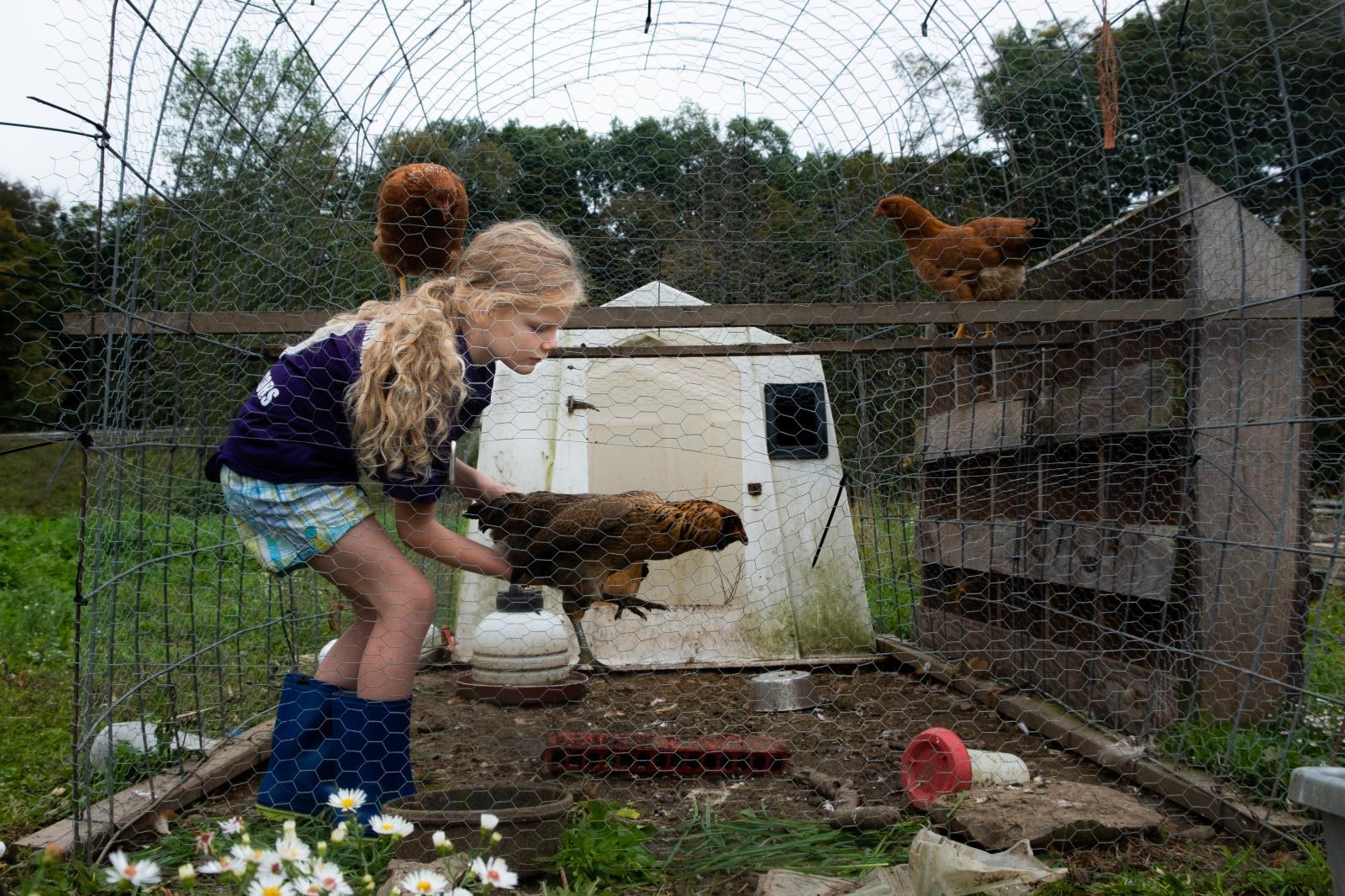 Photography image - Loading Abercrombie_Farm-17.jpg