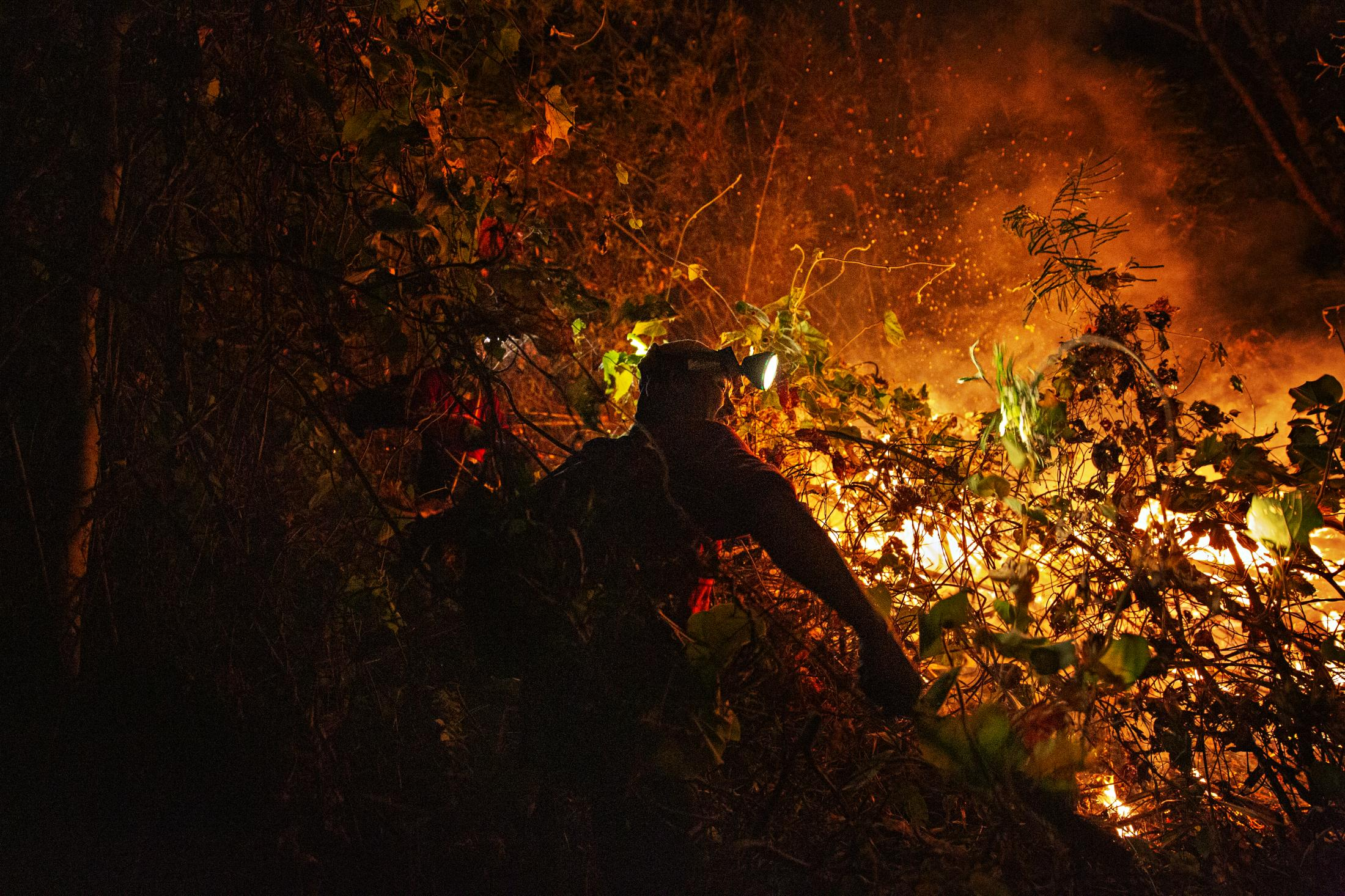 A firefighter battles a blaze in the forests of northern Thailand near the Thai-Myanmar boarder. Hundreds of on-going blazes early in 2019 raised the air-quality index in the region to an all time high of over 500.