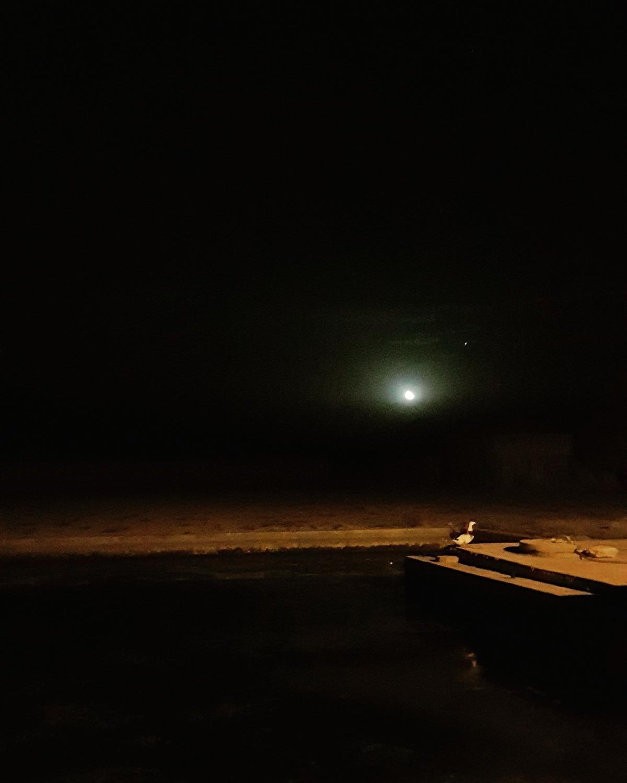 #goose #moon #prayer #mesr #desert