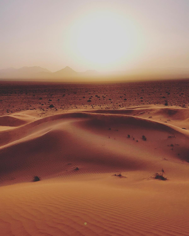 #sunset #mesr #desert