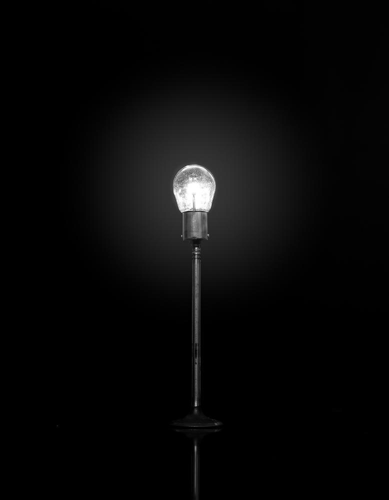 Streetlight / Farola Habitat #12