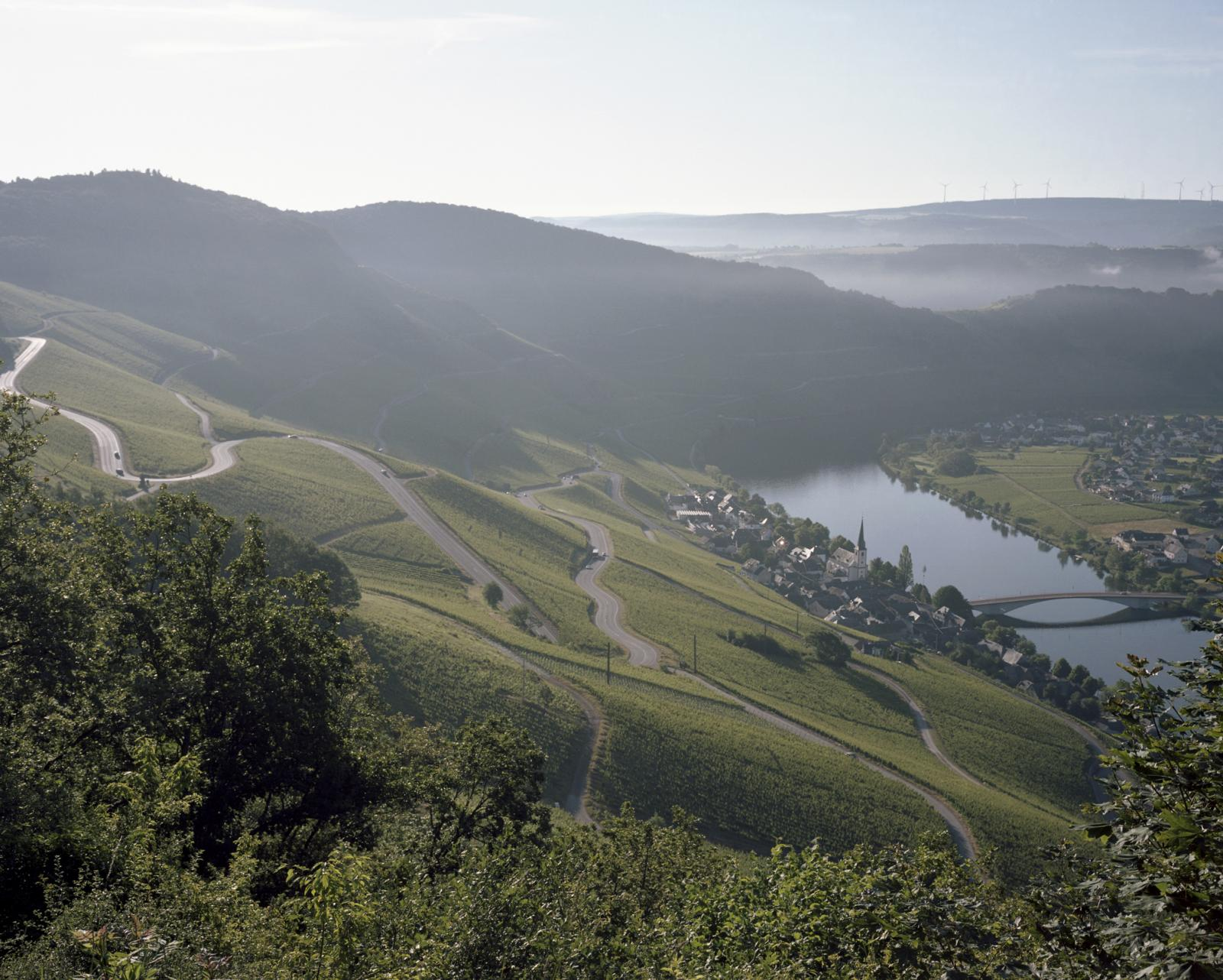 Germany, Piesport. The municipality lies surrounded by vineyards, meadows and woods in the Moselle valley between Bernkastel-Kues and Trier. It is the biggest winegrowing centre in the Mosel wine region.