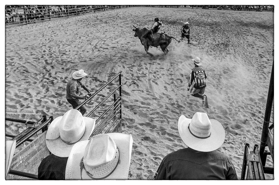 Art and Documentary Photography - Loading Rodeo_16-08-2019-1-2.jpg