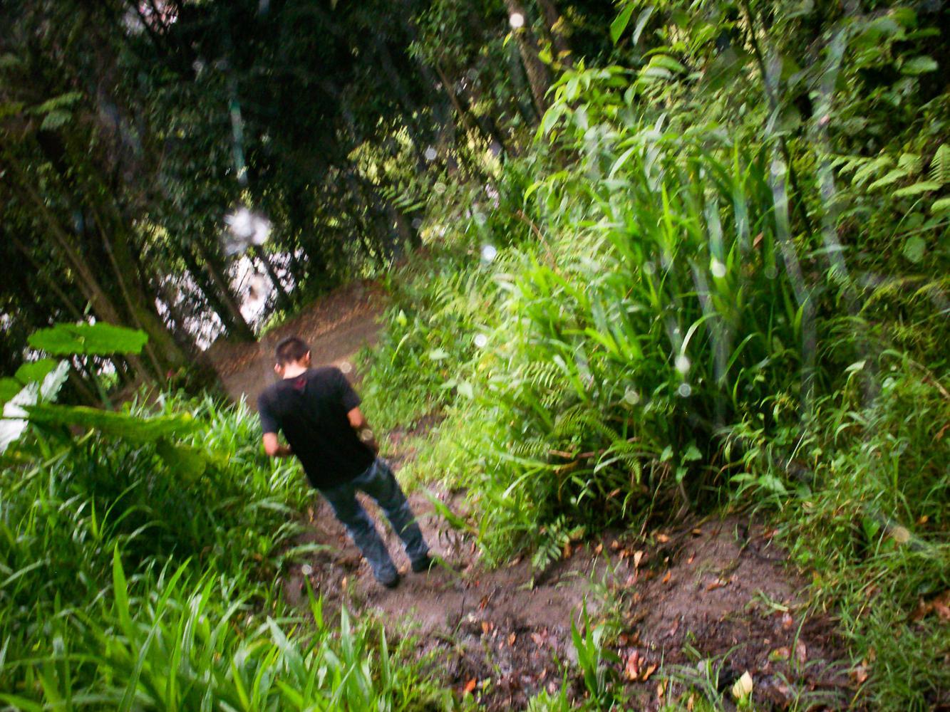 Una espesa Amazonía contemplaba ayer mi llanto. Cuando la desesperada cuidad me quitaba lo más anhelado.