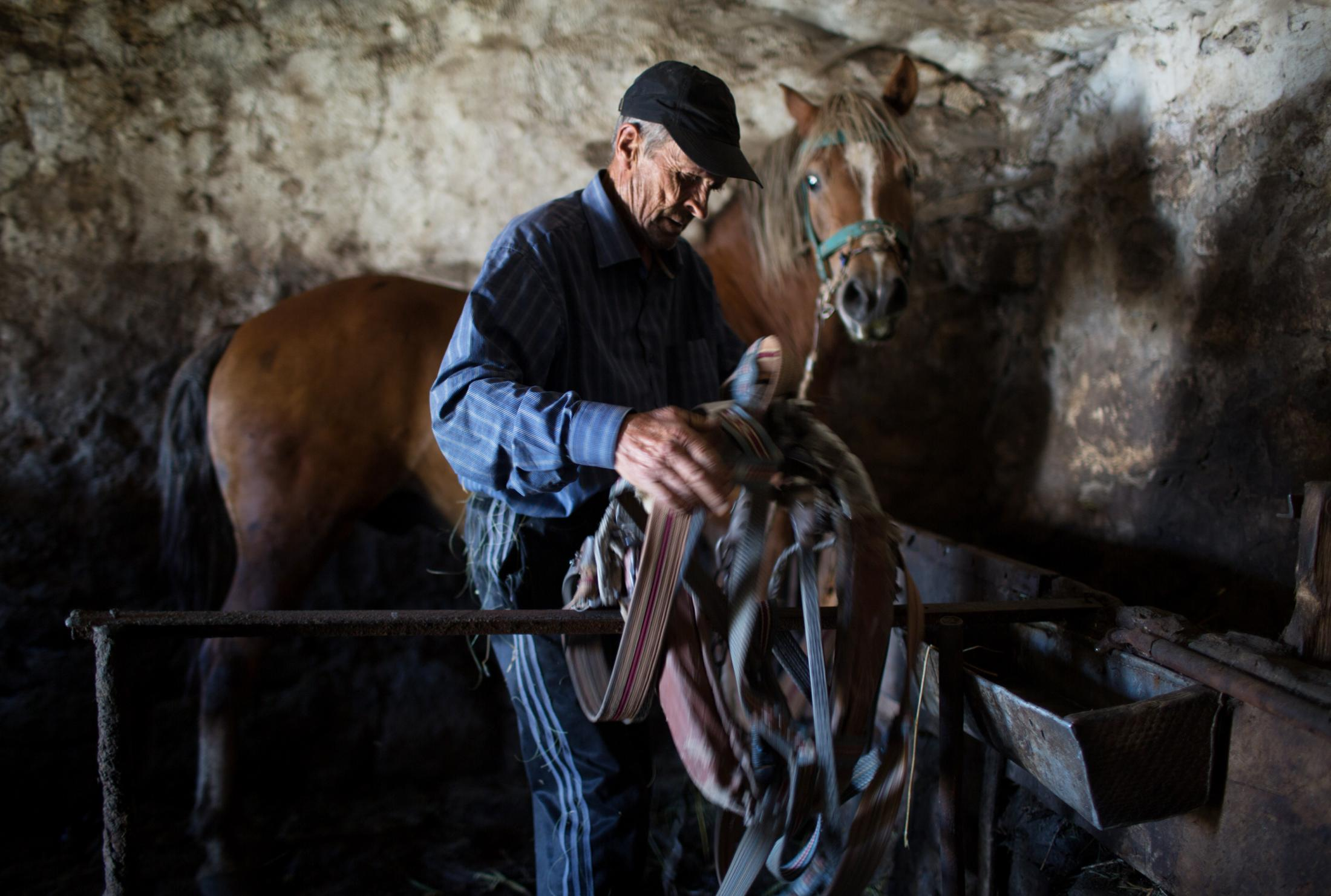 A Doukhobory farmer takes care of his horse after having worked the filed. The barn into which the horse is kept is part of his parents home built more than 100 years ago when the first Doukhobories arrived in the region.