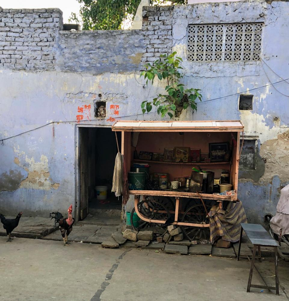 Photography image - Loading Jaipur_Chickens.JPG