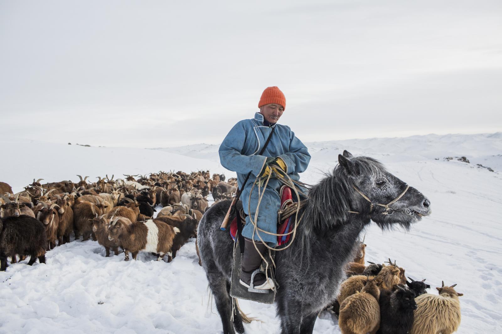 Photography image - Loading Mongolia_For_Website-002.JPG
