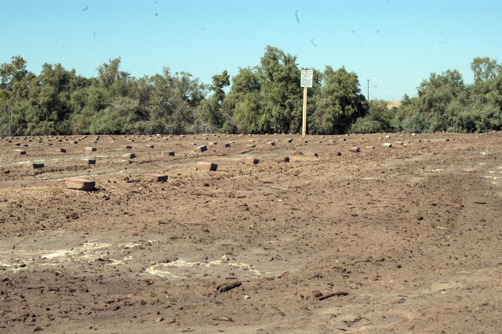 Photography image - Loading Cemetery_where_mass_unmarked_graves_from_migrants_who_perished.jpg