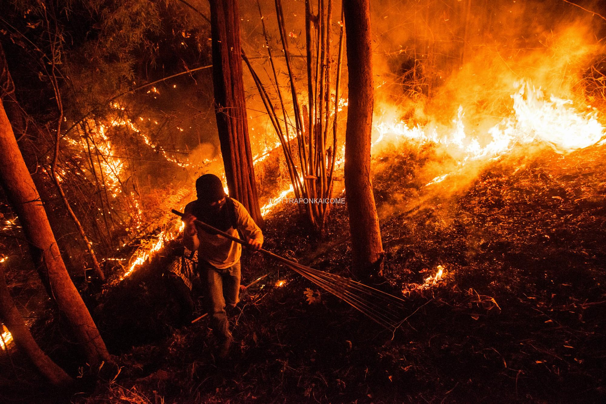 A firefighter hikes through a forest fire, to prevent its further spread during the night time by making a firebreak. 99% of all wildfires are caused by humans. Chiang Mai, Thailand.