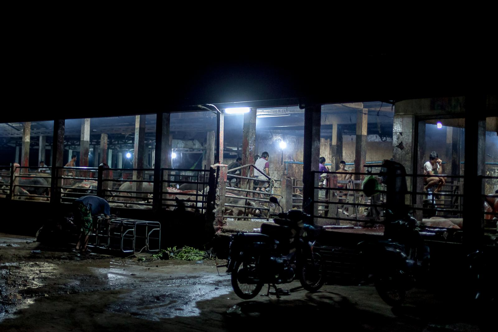 Photography image - Loading 001_Slaughterhouse-Cambodia-Omar-Havana.jpg