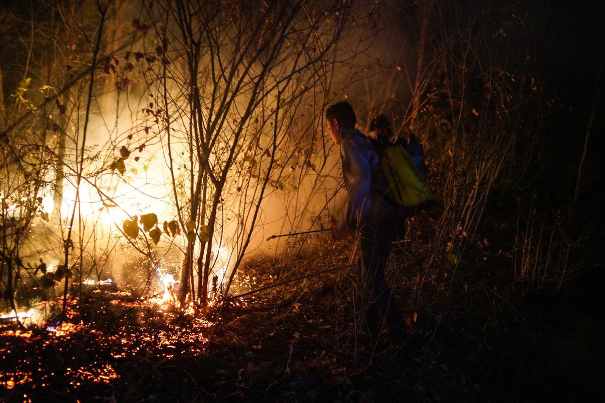 Photography image - Loading AMAZONWILDFIRES_002.JPG