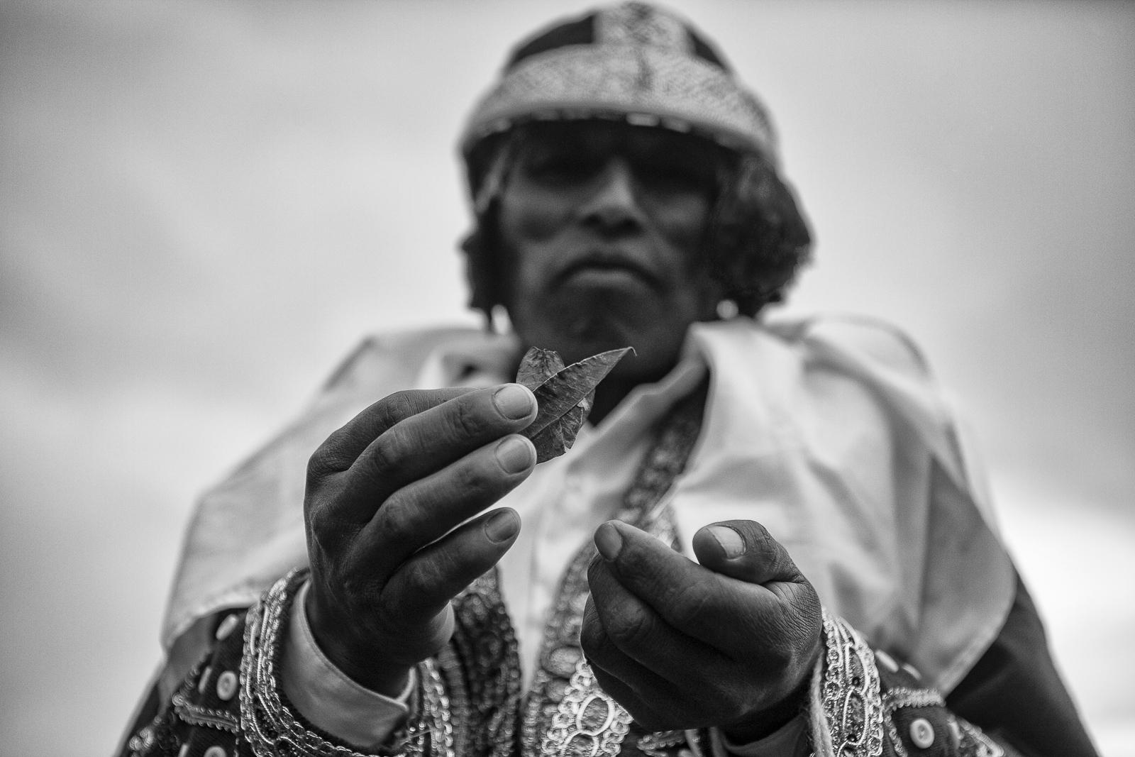 A man from the Checca community holds coca leaves. All over The Andes, coca leaves are considered sacred: they represent vital strength and spiritual food that enables communication with the gods. When chewed, coca leaves stimulate the body, help fight hunger, thrist, pain and fatigue.