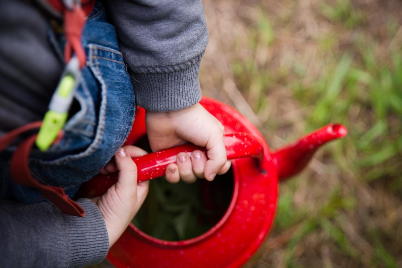 Photography image - Loading kinderwoods_foraging_0002.jpg