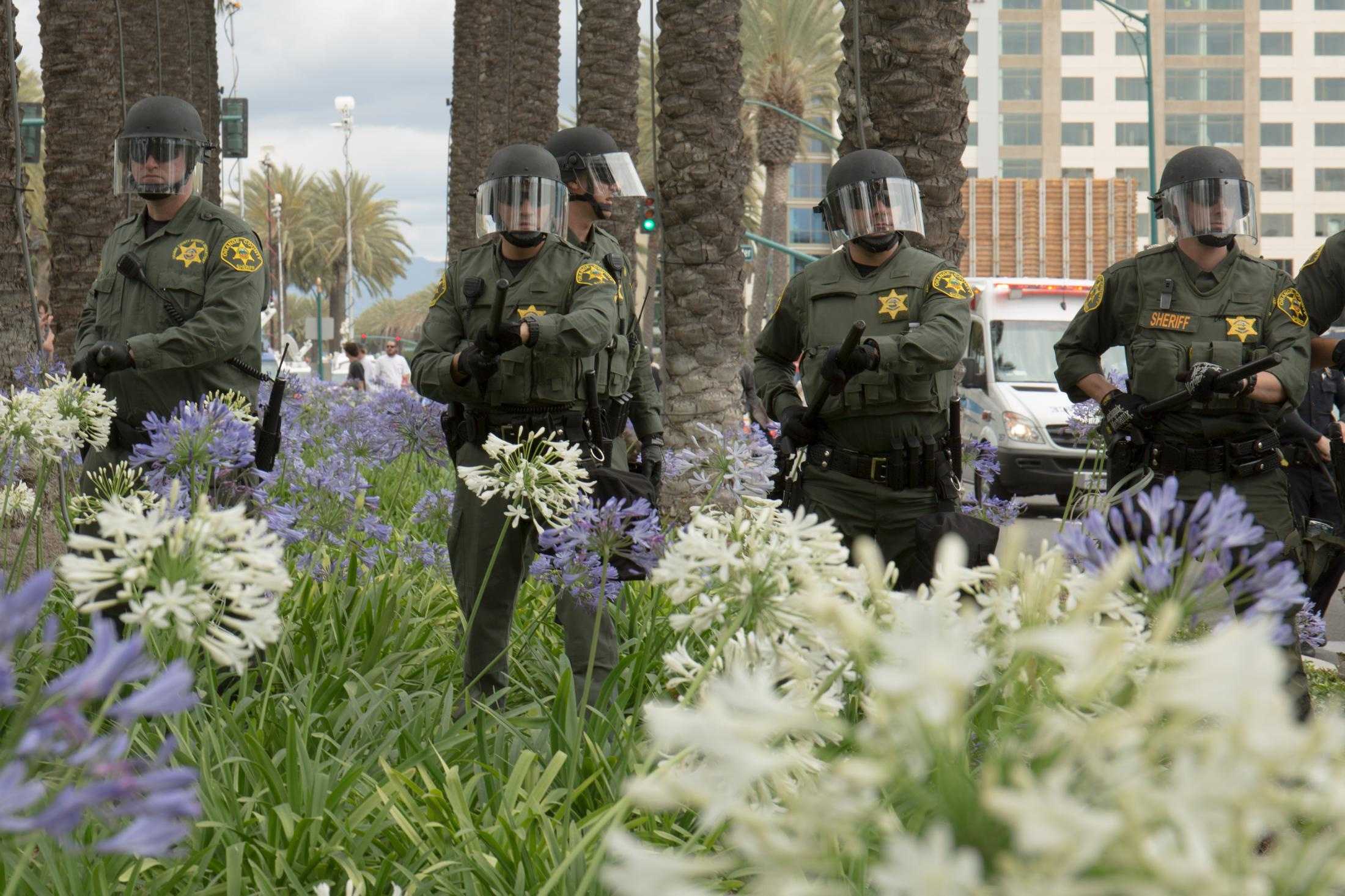 Orange County Sheriff officers in riot gear walk down the median filled with flowers and palm trees to move protesters away from the entrance to the Anaheim Convention Center where Donald Trump held a campaign rally on May 25, 2016.