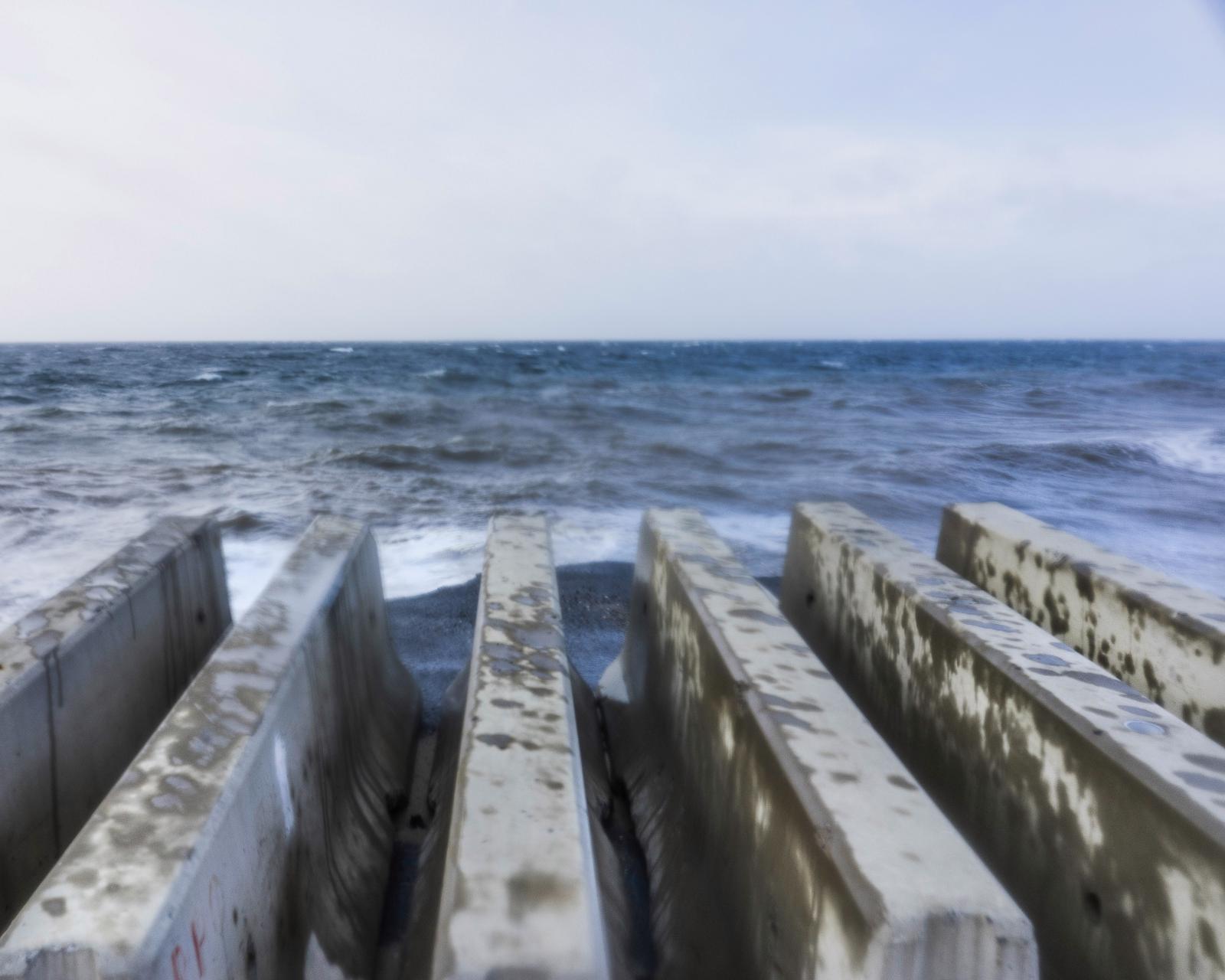 Photography image - Loading Sea_anchors_Print.jpg